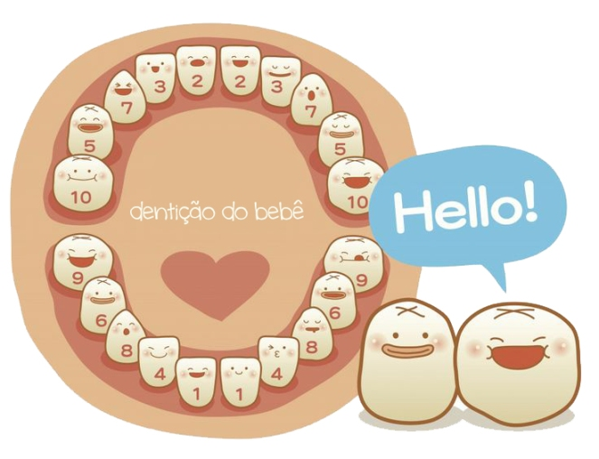denticaobaby